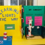 St David's Primary School Science Fair Bermuda, Feb 27 2014-16