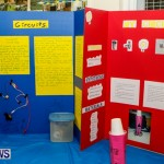 St David's Primary School Science Fair Bermuda, Feb 27 2014-17