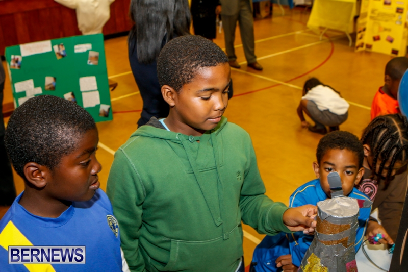 St David's Primary School Science Fair Bermuda, Feb 27 2014-18