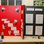 St David's Primary School Science Fair Bermuda, Feb 27 2014-19