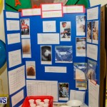 St David's Primary School Science Fair Bermuda, Feb 27 2014-21