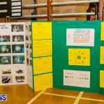 St David's Primary School Science Fair Bermuda, Feb 27 2014-23