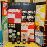 St David's Primary School Science Fair Bermuda, Feb 27 2014-25