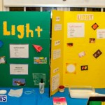 St David's Primary School Science Fair Bermuda, Feb 27 2014-26