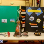 St David's Primary School Science Fair Bermuda, Feb 27 2014-28