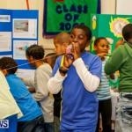 St David's Primary School Science Fair Bermuda, Feb 27 2014-3