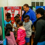 St David's Primary School Science Fair Bermuda, Feb 27 2014-31