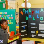 St David's Primary School Science Fair Bermuda, Feb 27 2014-34