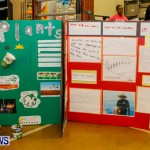 St David's Primary School Science Fair Bermuda, Feb 27 2014-35