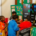 St David's Primary School Science Fair Bermuda, Feb 27 2014-36