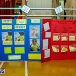 St David's Primary School Science Fair Bermuda, Feb 27 2014-38