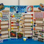St David's Primary School Science Fair Bermuda, Feb 27 2014-39