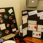 St David's Primary School Science Fair Bermuda, Feb 27 2014-40
