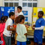 St David's Primary School Science Fair Bermuda, Feb 27 2014-42
