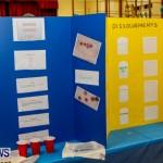 St David's Primary School Science Fair Bermuda, Feb 27 2014-44