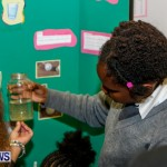 St David's Primary School Science Fair Bermuda, Feb 27 2014-46
