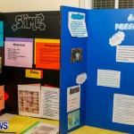 St David's Primary School Science Fair Bermuda, Feb 27 2014-48