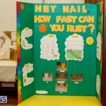 St David's Primary School Science Fair Bermuda, Feb 27 2014-5