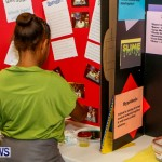 St David's Primary School Science Fair Bermuda, Feb 27 2014-50