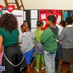 St David's Primary School Science Fair Bermuda, Feb 27 2014-51
