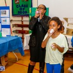 St David's Primary School Science Fair Bermuda, Feb 27 2014-6