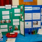 St David's Primary School Science Fair Bermuda, Feb 27 2014-8
