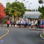 "Validus ""Running of the Bulls"" 5K Bermuda, March 30 2014-1"