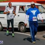 "Validus ""Running of the Bulls"" 5K Bermuda, March 30 2014-126"