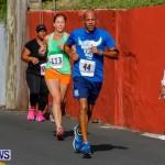 "Validus ""Running of the Bulls"" 5K Bermuda, March 30 2014-149"