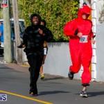 "Validus ""Running of the Bulls"" 5K Bermuda, March 30 2014-157"