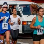 "Validus ""Running of the Bulls"" 5K Bermuda, March 30 2014-185"