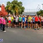 "Validus ""Running of the Bulls"" 5K Bermuda, March 30 2014-30"