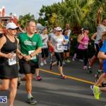 "Validus ""Running of the Bulls"" 5K Bermuda, March 30 2014-48"