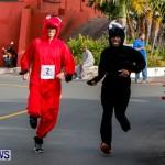 "Validus ""Running of the Bulls"" 5K Bermuda, March 30 2014-56"