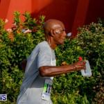 "Validus ""Running of the Bulls"" 5K Bermuda, March 30 2014-63"