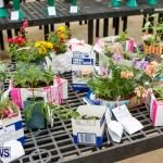 Agricultural Exhibition Bermuda, April 24 2014-66