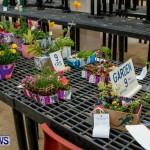 Agricultural Exhibition Bermuda, April 24 2014-68