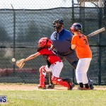 YAO Youth Baseball Bermuda, April 26 2014 (1)