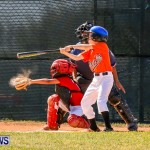 YAO Youth Baseball Bermuda, April 26 2014 (10)