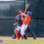 YAO Youth Baseball Bermuda, April 26 2014 (11)