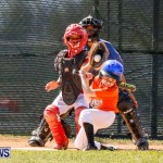 YAO Youth Baseball Bermuda, April 26 2014 (13)