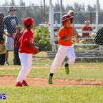 YAO Youth Baseball Bermuda, April 26 2014 (2)