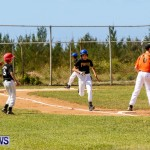 YAO Youth Baseball Bermuda, April 26 2014 (28)