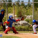 YAO Youth Baseball Bermuda, April 26 2014 (31)