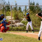 YAO Youth Baseball Bermuda, April 26 2014 (38)
