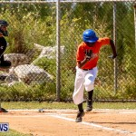 YAO Youth Baseball Bermuda, April 26 2014 (41)