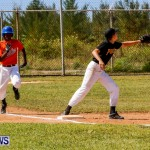 YAO Youth Baseball Bermuda, April 26 2014 (42)