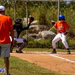 YAO Youth Baseball Bermuda, April 26 2014 (48)
