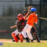 YAO Youth Baseball Bermuda, April 26 2014 (5)