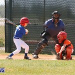 Youth Baseball Bermuda, April 19 2014-1